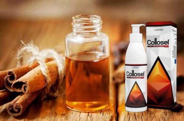 ingredientes y composición del aceite de canela