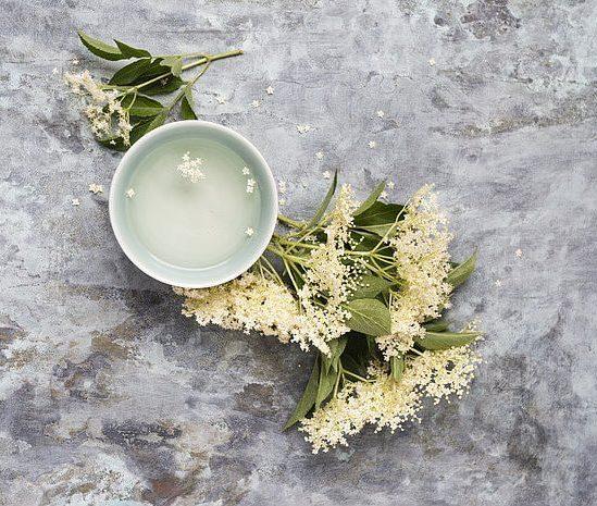 Fiore di sambuco