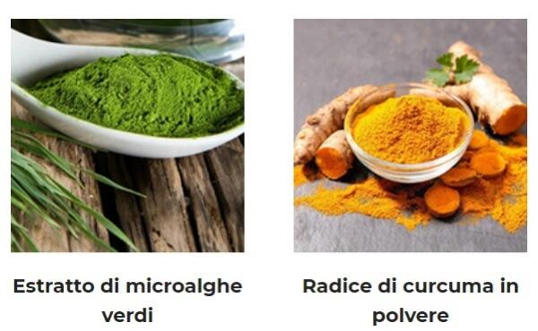composición ingredientes