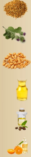 Ingredientes del aceite head and hair