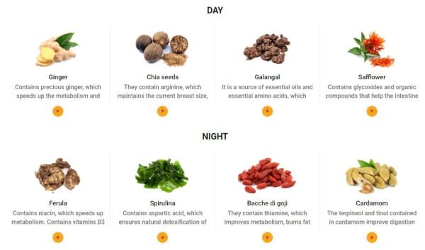 ingredientes y composición de los parches adelgazantes