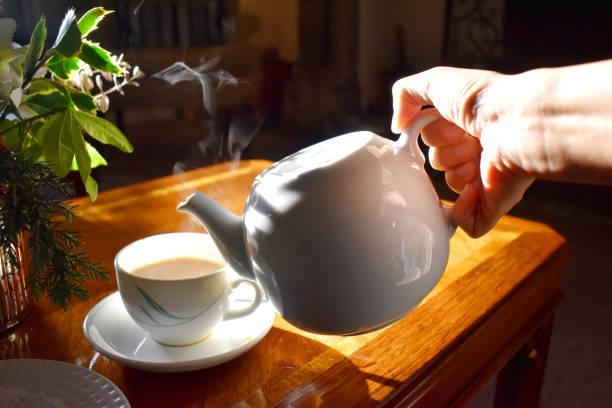 tè, erba tribulus terrestris